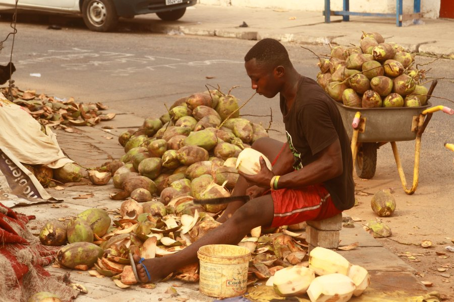 Coconut Man 9 - photo by ACCRA [dot] ALT