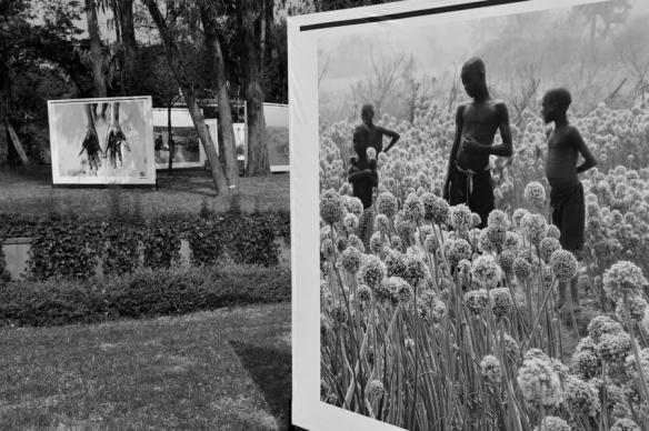 Lawn Exhibition  | photo courtesy of Addis Foto Fest 2010