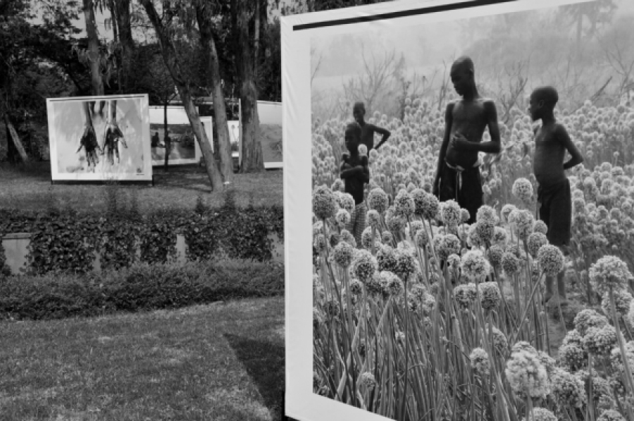 Lawn Exhibition  | photo courtesy of Addis Foto Fest 2010