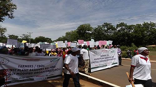 SMALL HOLDER FARMERS IN NORTHERN GHANA PROTEST GMO & PLANTS BREEDERS BILL